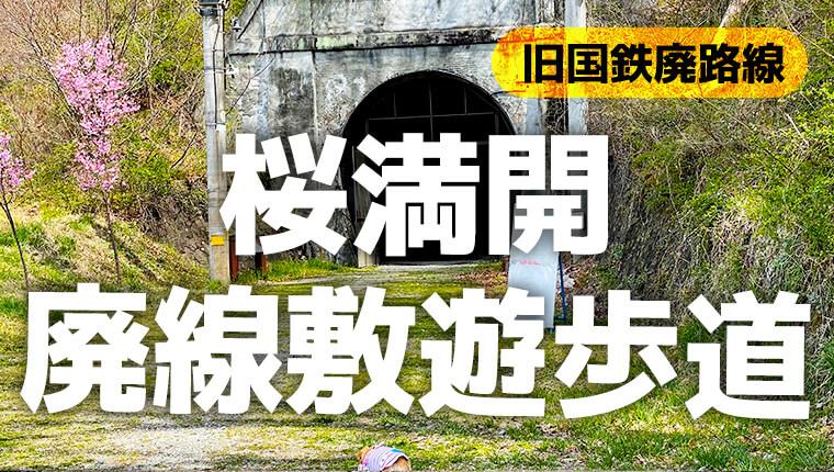 桜が満開の廃線敷遊歩道!ロングコースを2回にわけて歩いてみた。【旧国鉄篠ノ井線】a